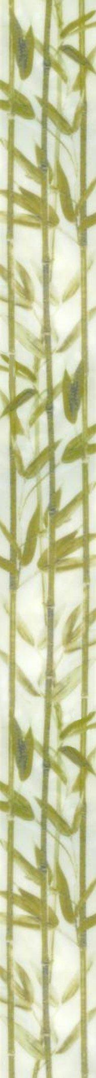 bambus.jpg